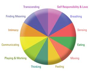 wellness inventory